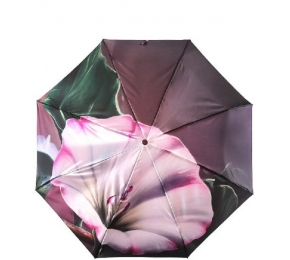 Зонт Trust 30471-5