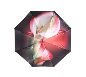 Зонт Trust 30471-6