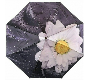 Зонт Trust 30471-12